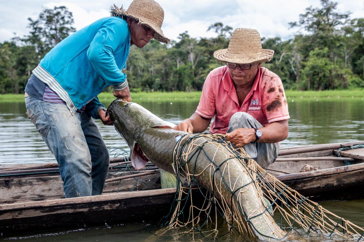 Em 2020, pandemia impactou atividades de pesca na Amazônia