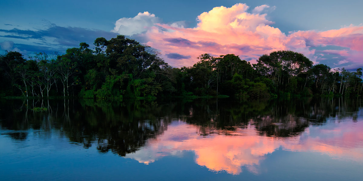Galeria de fotos: 'A Vida na Amazônia'