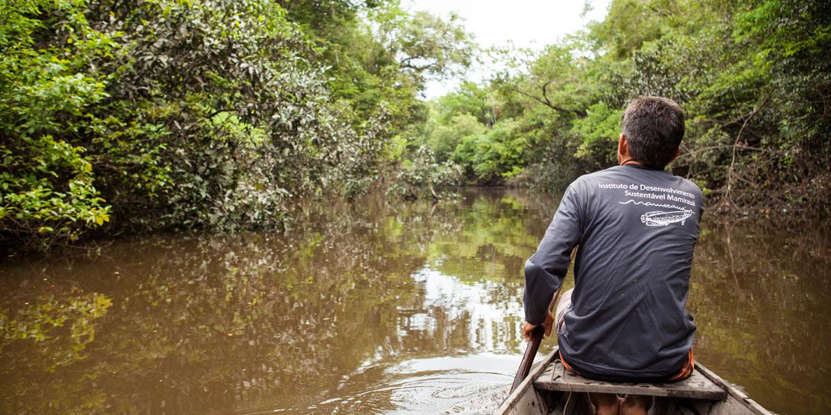 Conhecimento tradicional é método eficiente para estimar abundância de espécies na Amazônia
