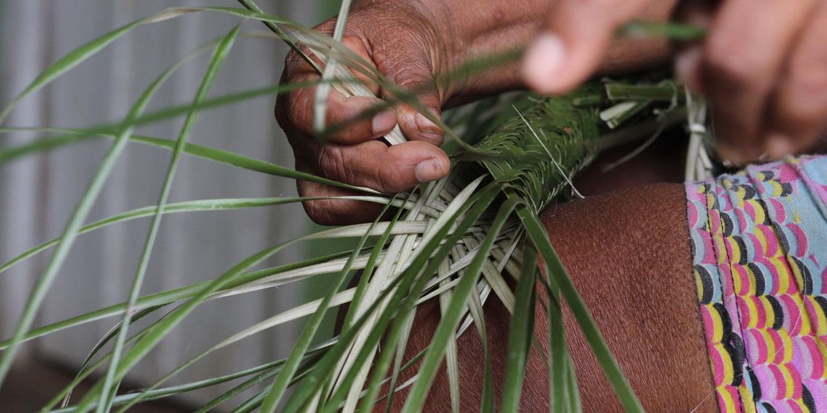 Conheça o tipiti, tecnologia indígena de uso secular na Amazônia