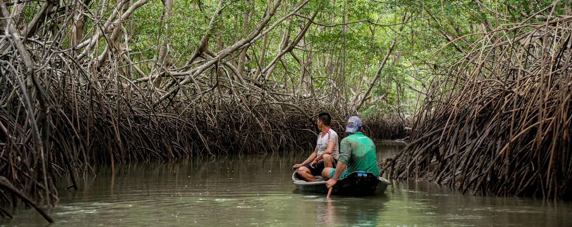 Curso de manejo de caranguejo reforça a importância de áreas protegidas na Amazônia
