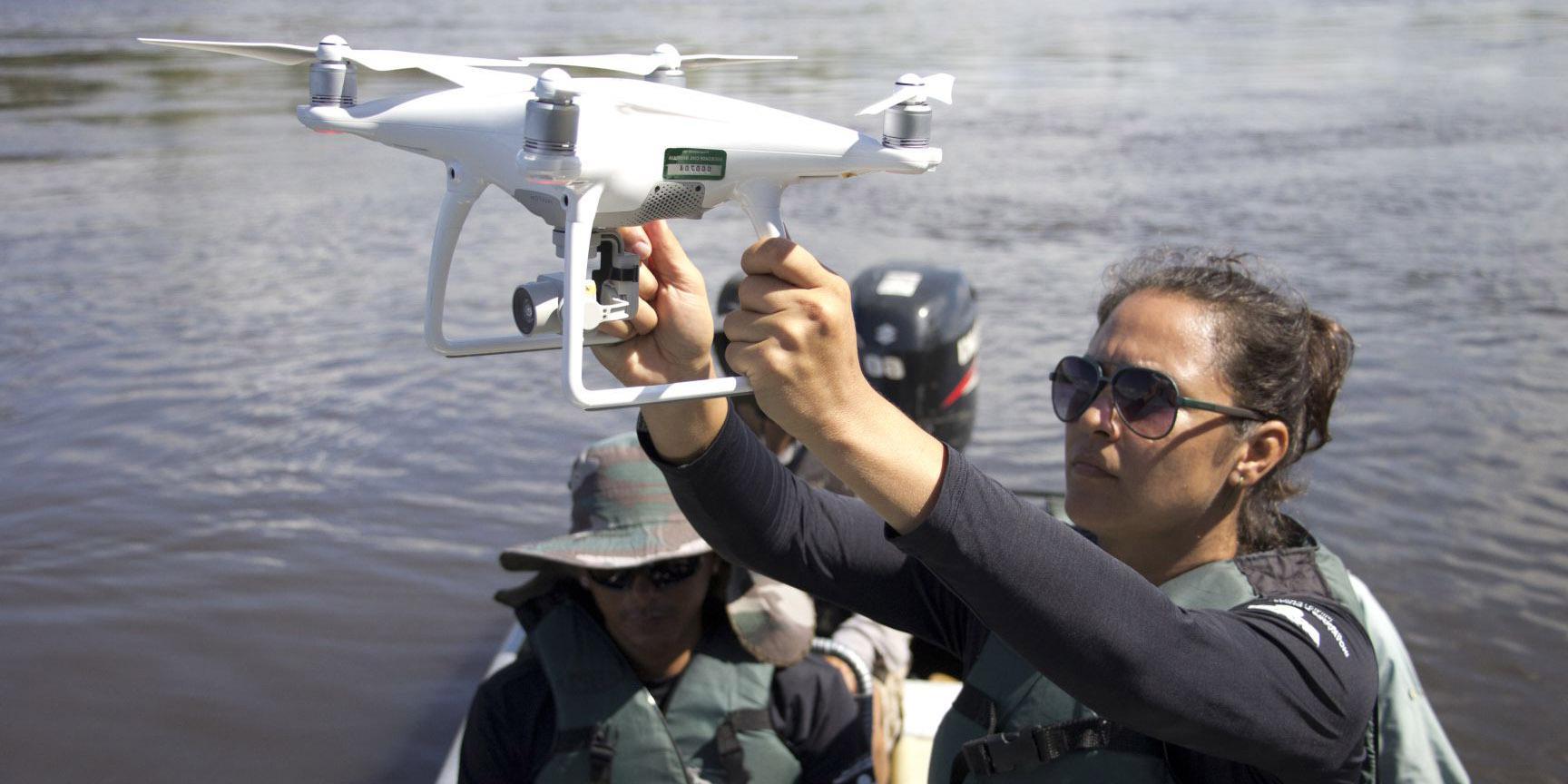 Drones são mais precisos no monitoramento de botos em rios estreitos da Amazônia, mostra estudo