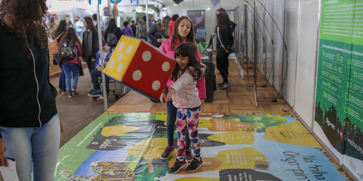 Instituto Mamirauá disponibiliza novos jogos e brinquedos de educação ambiental para download gratuito